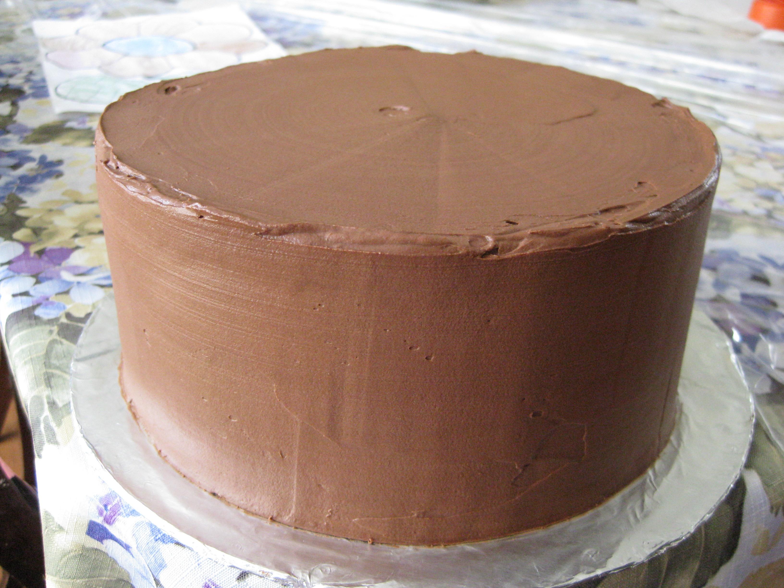 Chocolate Mayo Cake | Pragmatic Attic
