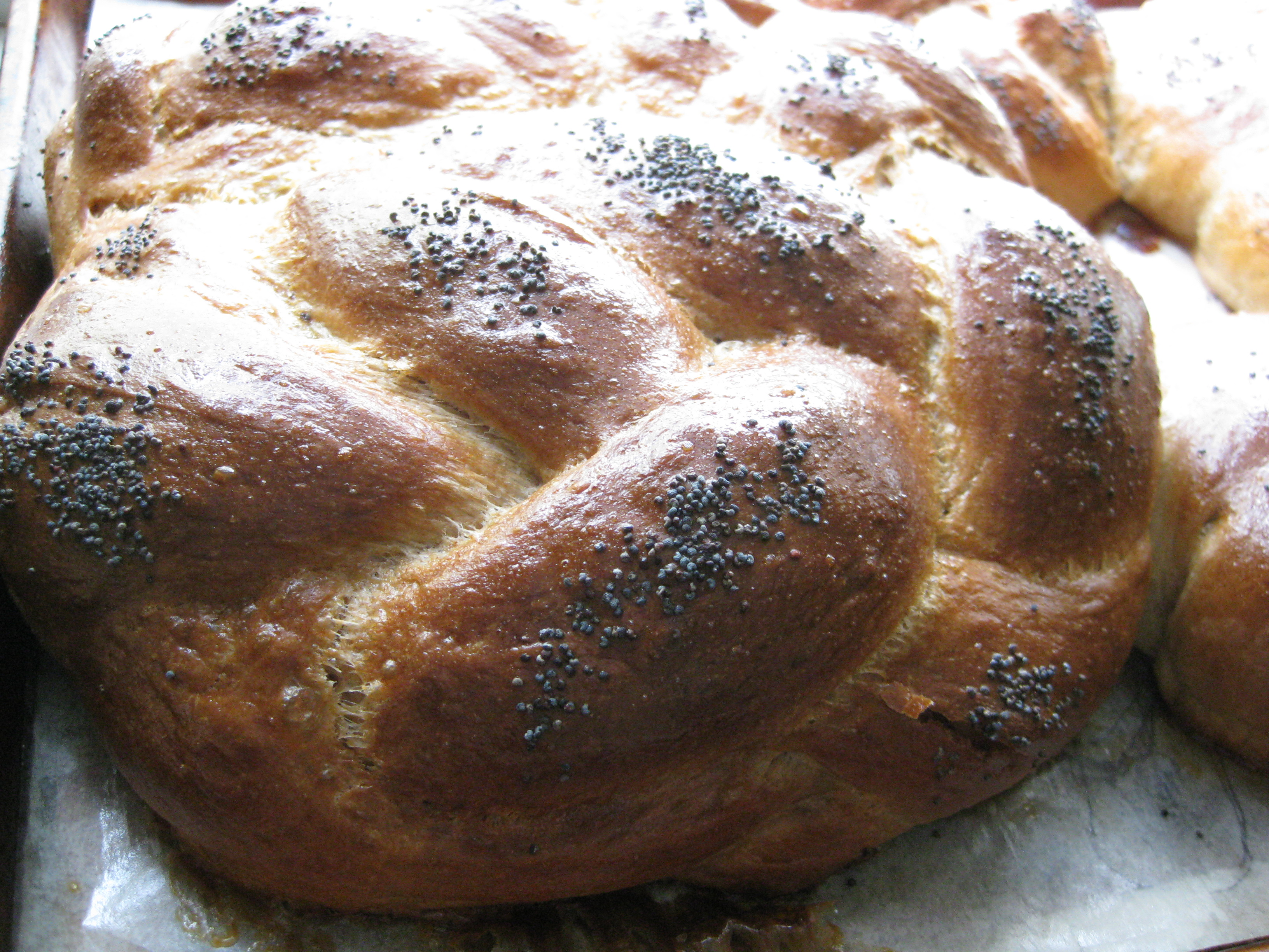 Whole wheat challah pragmatic attic - Kitchenaid challah ...