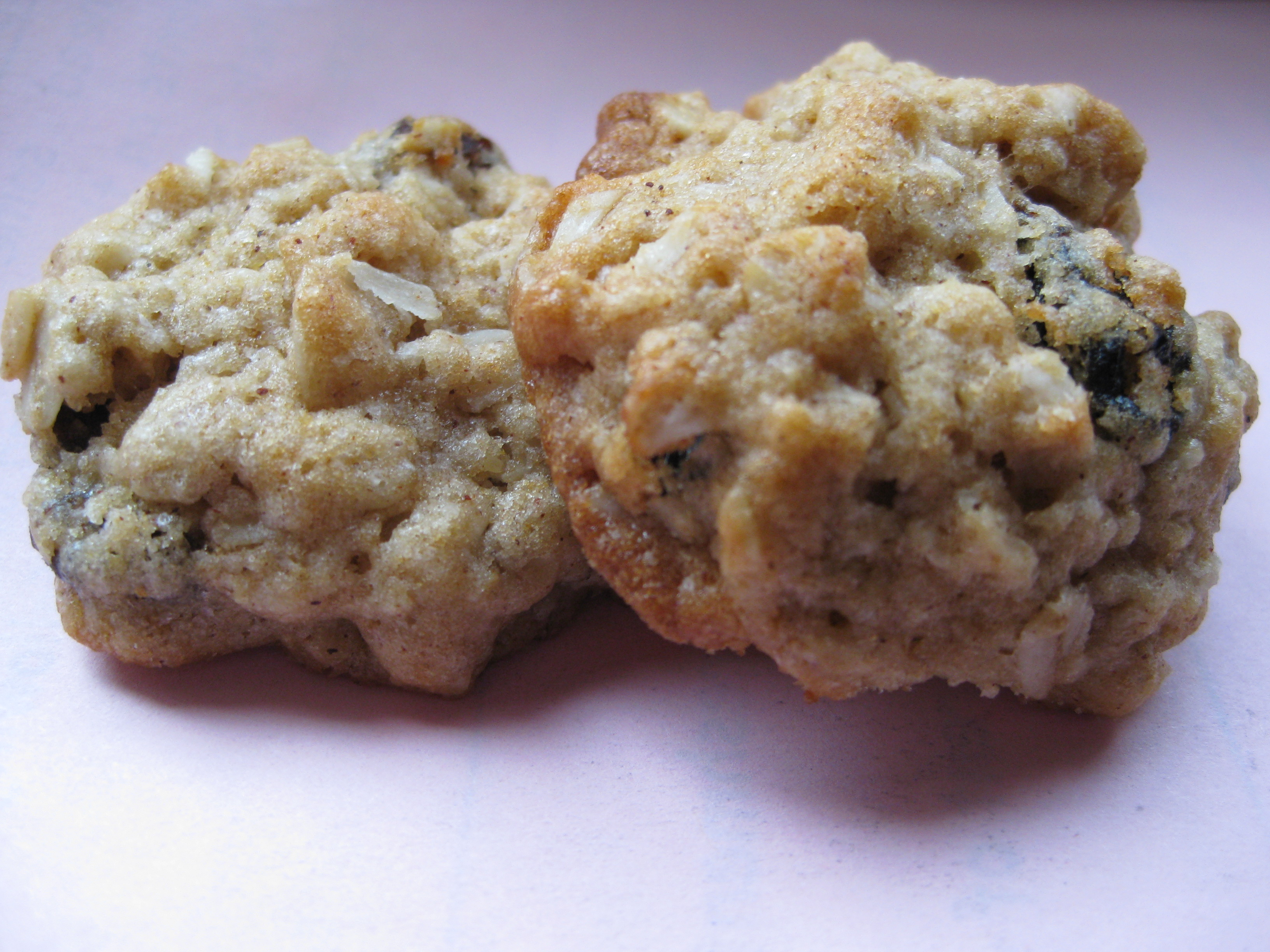 Healthy Oatmeal Raisin Cookies | Pragmatic Attic