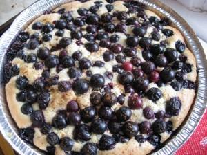 Blueberry Bublanina (Czech Coffee Cake) | Pragmatic Attic